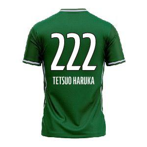 TETSUO HARUKA