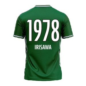 IRISAWA